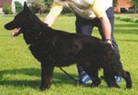April12-14, 2002-Cumberland Valley SchH Club-TN