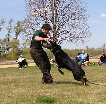 October 11, 2014-Midwest Police and Working Dog Club-MN